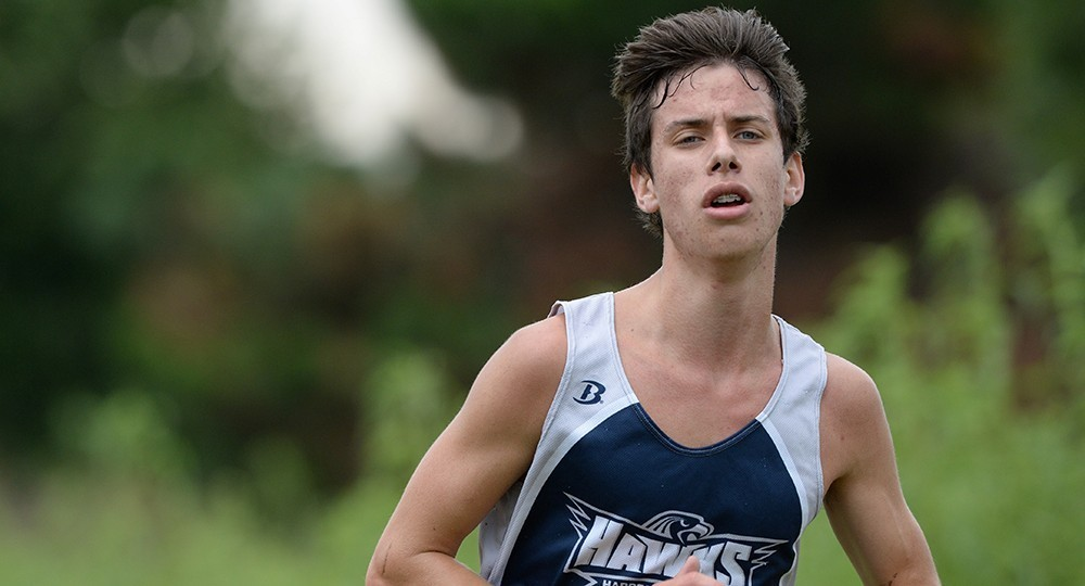 Men's Cross Country: Adam Brauer 2014